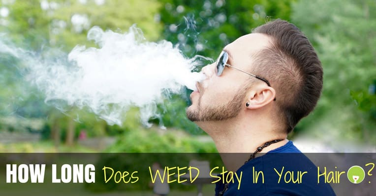 how long does weed stay in your hair