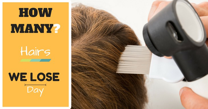 how-many hairs do we lose a day