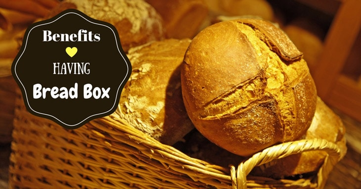 How To Choose The Best Bread Box
