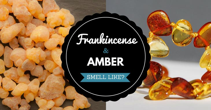 frankincense and amber