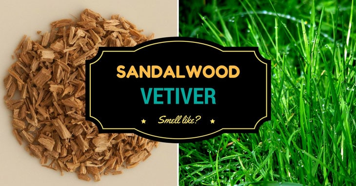 sandalwood and vetiver